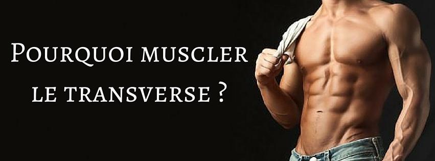 Pourquoi muscler le transverse -