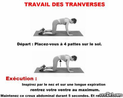 muscler le transverse